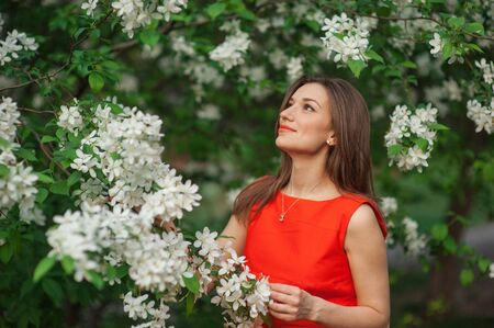 beautiful woman in white spring blossom of apple trees.