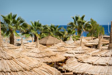 sharm el sheikh: Beach at the luxury hotel, Sharm el Sheikh, Egypt.