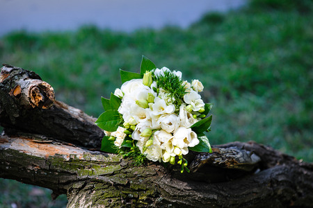 white wedding bouquet lying on a log. Stock Photo