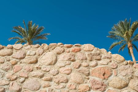 cornerstone: Stone wall and palms against the blue sky.