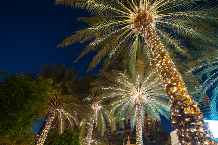 christmas decoration background palm tree. Foto de archivo