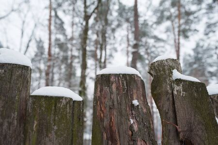 snowcovered: Snow-covered old rural wooden fence in winter time. Stock Photo