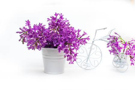 decorated bike: lilac flowers on a white background decorated with small bike. Stock Photo
