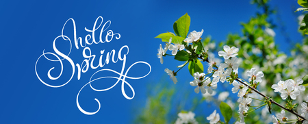 Beautiful blooming spring garden on a background of blue sky and text Hello Spring. Calligraphy lettering