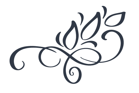 Hand drawn border flourish separator Calligraphy designer elements. Vector vintage wedding illustration Isolated on white background