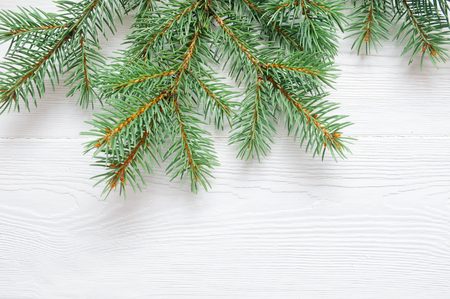 Fir tree branch isolated on white wooden background. Pine branch. Christmas background. Twig of Christmas tree, element for decoration of x-mas decor branch of green spruce. Pine branch isolate on white