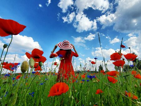 Dreamy woman in red dress and a big red striped hat turned back in beautiful herb flowering poppy field. Vintage elegant romantic look. concept of lovely