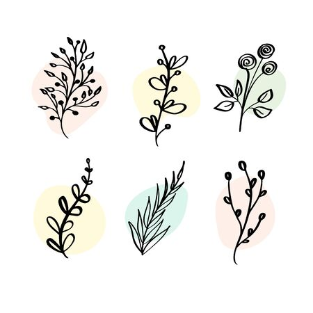 Vector Set botanic elements wildflowers, herbs. Collection garden and wild foliage, flowers, organic. Illustration isolated plants on white background Çizim