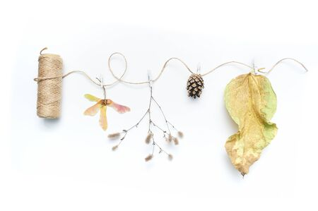Isolated autumn leaves, plants and rope with place for your text on white background. fall flat lay, top view creative objects. Elements for Thanksgiving day design Stockfoto