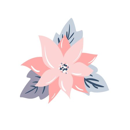 Isolated vector illustration of a christmas star flower poinsetia, pastel color. Reklamní fotografie - 129931989