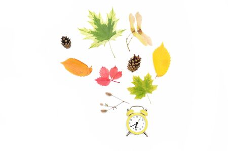 Autumn Time Change, Fall Back, Thanksgiving Maple Leaves and an Alarm Clock isolated on White Background