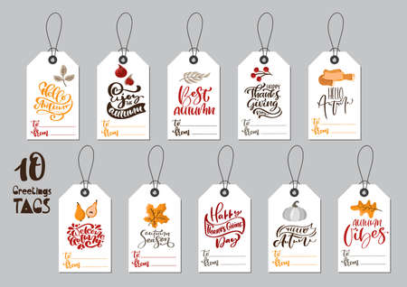 Vector collection of autumn tags with calligraphic phrases Happy Thanksgiving Day and place for text. Hand drawn typography templates with fall some illustrations. Banner design set