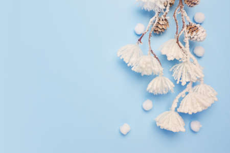 Mock up of Eucalyptus leaves and cotton plant with place for text on blue background. Wreath made of branches, cones. Flat lay, top view