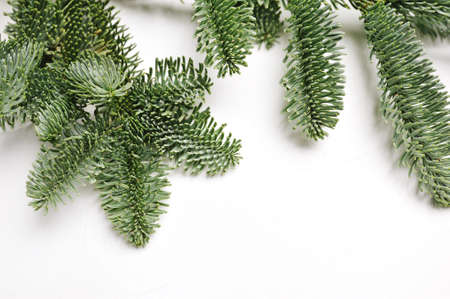Christmas fir branches with place for your text on a white background isolated. New Year card template Top view copyspace Foto de archivo - 161562084