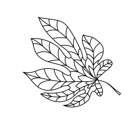 Hand drawn autumn chestnut leaf in doodle style. Leaf icon on white background. Vector illustration of chestnut for clothes, bed linen, postcards, icon, sticker for textile design