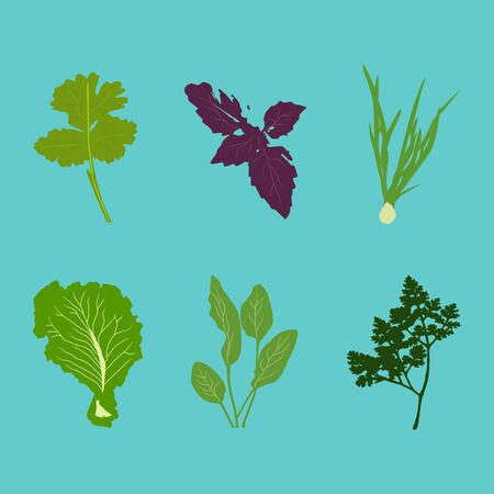 Set of vector vegetables in flat style on blue background.