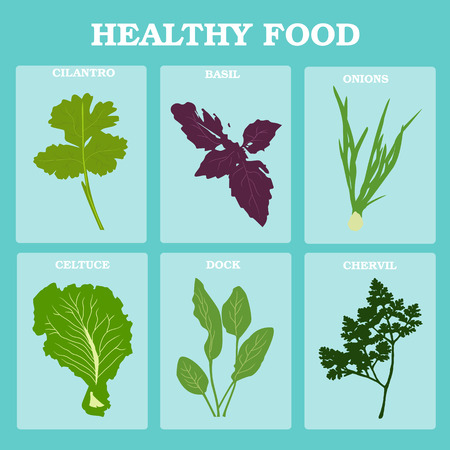 Fresh vegetables vector concept. Healthy diet flat style illustration. Isolated green food, can be used in restaurant menu, cooking books and organic farm labels. Vegetables set Stock Vector - 56434407