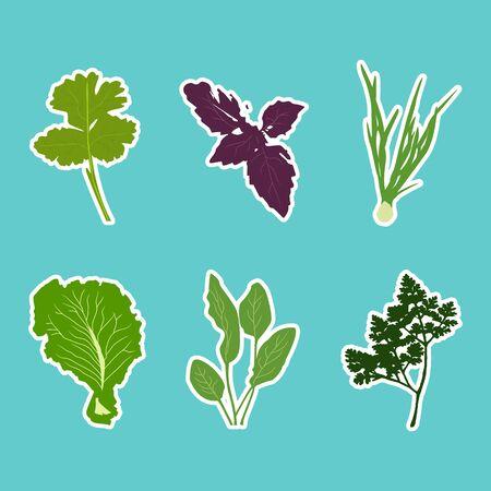 Vector set of flat cartoon vegetables stickers. Vector background. Flat icon. Vegetarian sticker. Healthy food sticker. Raw food diet.