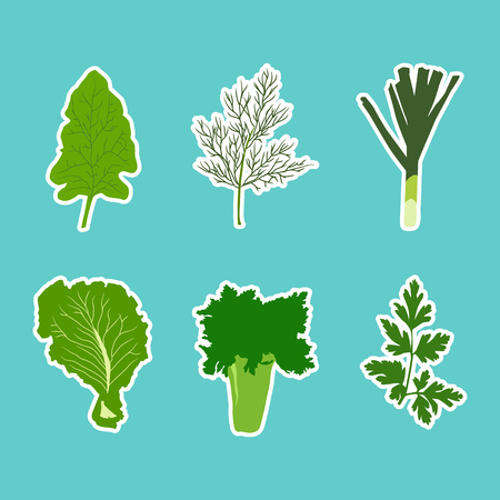 raw food: Vector set of flat cartoon vegetables stickers. Vector background. Flat icon. Vegetarian sticker. Healthy food sticker. Raw food diet.