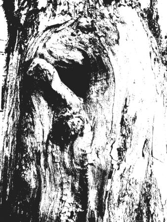 Tree Texture. Tree Background. Tree Effect. Tree Overlay. Grunge Black and White Distress Texture. Scratch Texture. Dirty Texture. Wall Background. Vector Illustration. Wooden texure. Wood texture Illustration