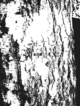 tree bark: Distressed overlay wooden bark texture, grunge background. abstract vector illustration.