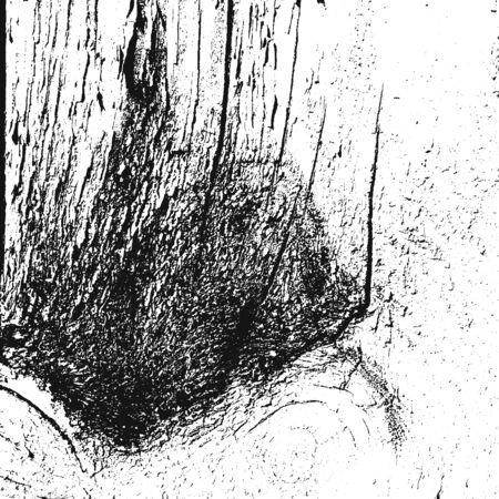 rinds: Distressed overlay damaged wooden bark grunge texture, grunge background. abstract halftone vector illustration. Illustration