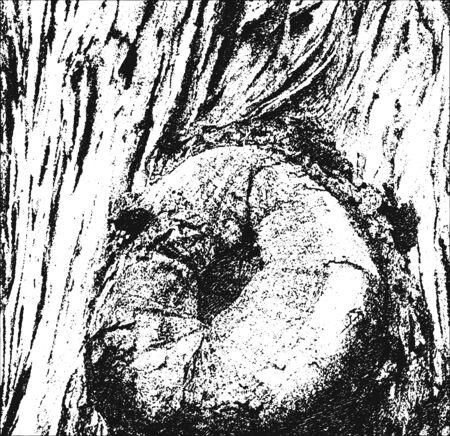 nakładki: Distressed nakładki drewniane kory tekstury, grunge wektora tle. Ilustracja