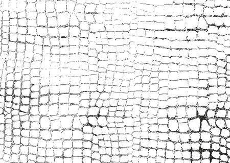 Lamentando textura cubrió de cocodrilo o cuero de piel de serpiente, fondo del grunge del vector.