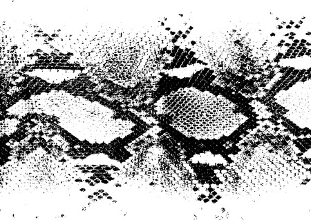 Distressed overlay animal skin texture