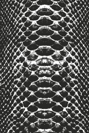 Crocodile skin pattern. Stock Illustratie