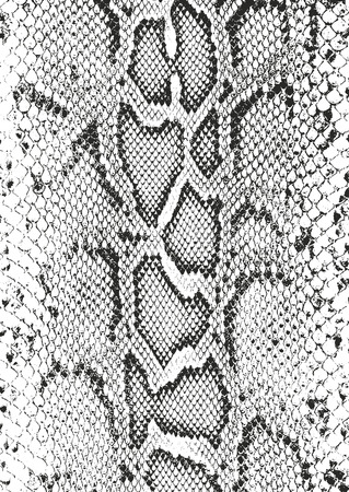Texture de superposition en détresse de cuir de peau de crocodile ou de serpent, fond de vecteur de grunge.