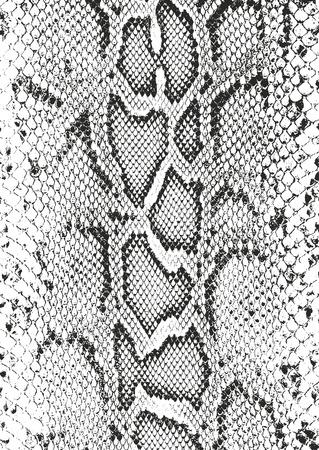 Trudnej sytuacji nakładki tekstury skóry krokodyla lub węża, tło wektor grunge.