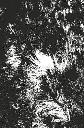 Distressed overlay texture of natural fur, grunge vector background. abstract halftone vector illustration Vettoriali