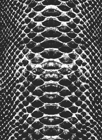 Distressed overlay texture of crocodile or snake skin leather, grunge vector background. Archivio Fotografico - 110111002