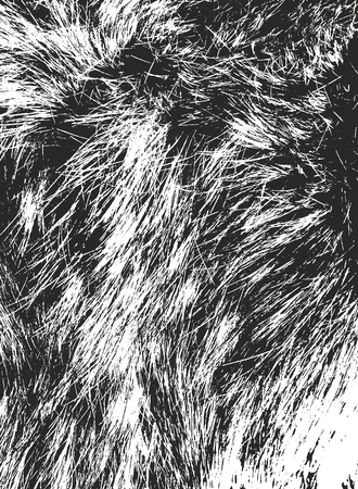 Distressed overlay texture of natural fur, grunge vector background. abstract halftone vector illustration 일러스트
