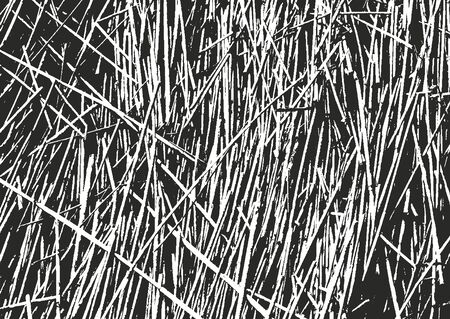 Distressed overlay grass stem texture on the ground. grunge black and white background. abstract halftone vector illustration