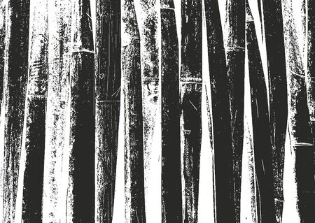 Distressed overlay bamboo plank texture, grunge background. abstract halftone vector illustration Illustration