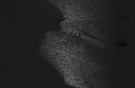 Luxury black metal gradient background with distressed birds feather texture. Vector illustration Archivio Fotografico