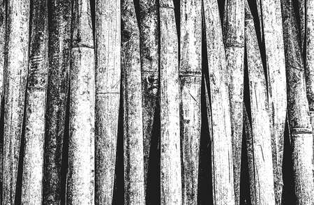 Distressed overlay bamboo, indian cane texture, grunge background.