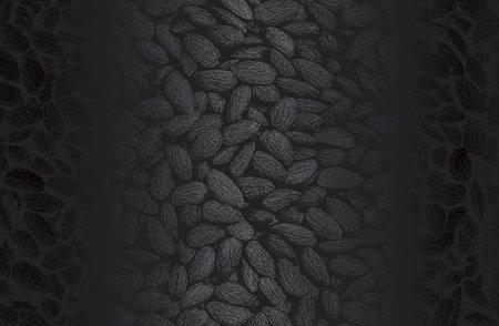 Luxury black metal gradient background with distressed closeup almond nuts texture. Vector illustration Standard-Bild