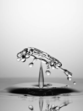 Water Drop Collision Macro, Black and White