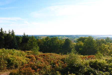 Birmingham lickey hills country park