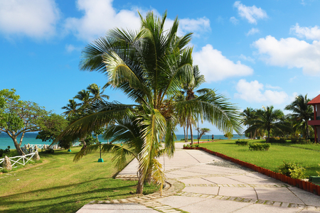 cuba holguin guardalavaca pathway Stock Photo