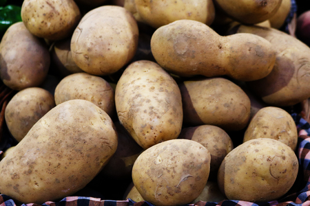 Fresh potatos Stock Photo