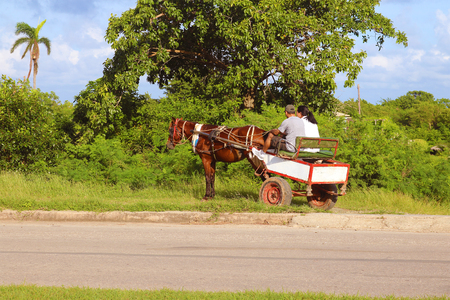Man on a horse and carriage