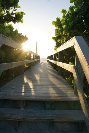 Pathway to the Sunrise Фото со стока