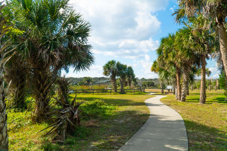 Late afternoon at the River to the Sea park in Palm County Florida