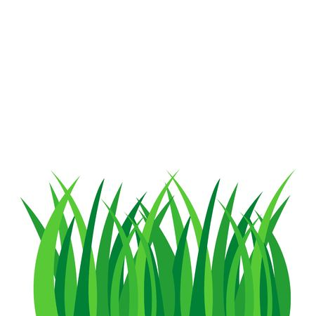 Green grass vector illustration isolated on white background