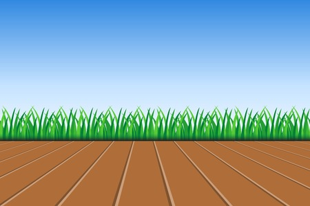 Background of green grass, wooden deck and blue sky vector illustration