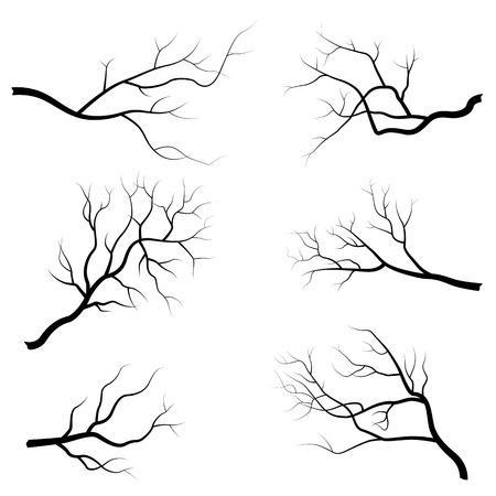 Illustrazione di vettore del ramo di albero isolato su priorità bassa bianca. Design piatto Vettoriali